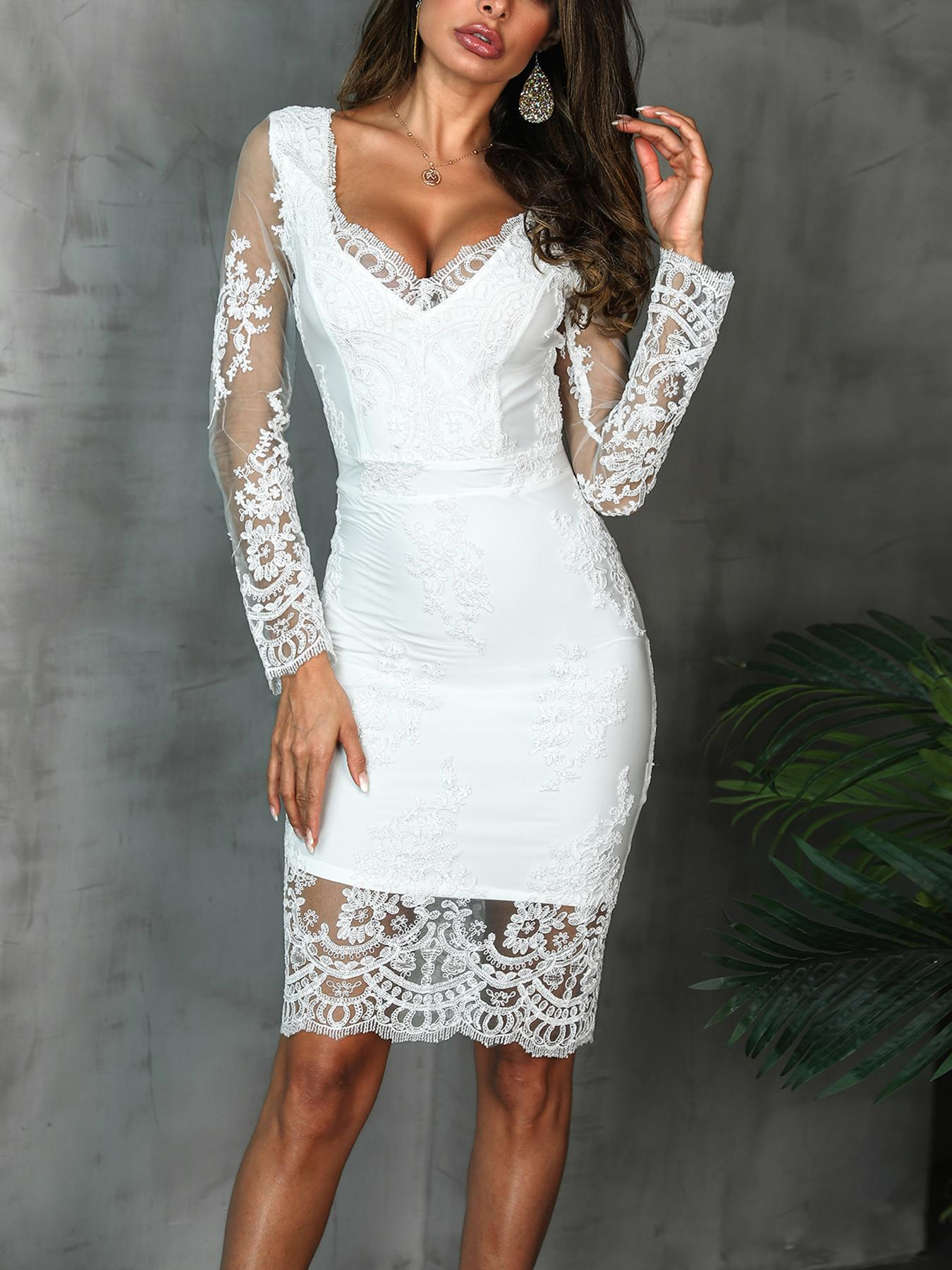 Embroidery Lace Overlay Bodycon Dress