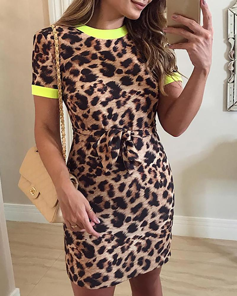 Short Sleeve Leopard Print Knot Waist Dress