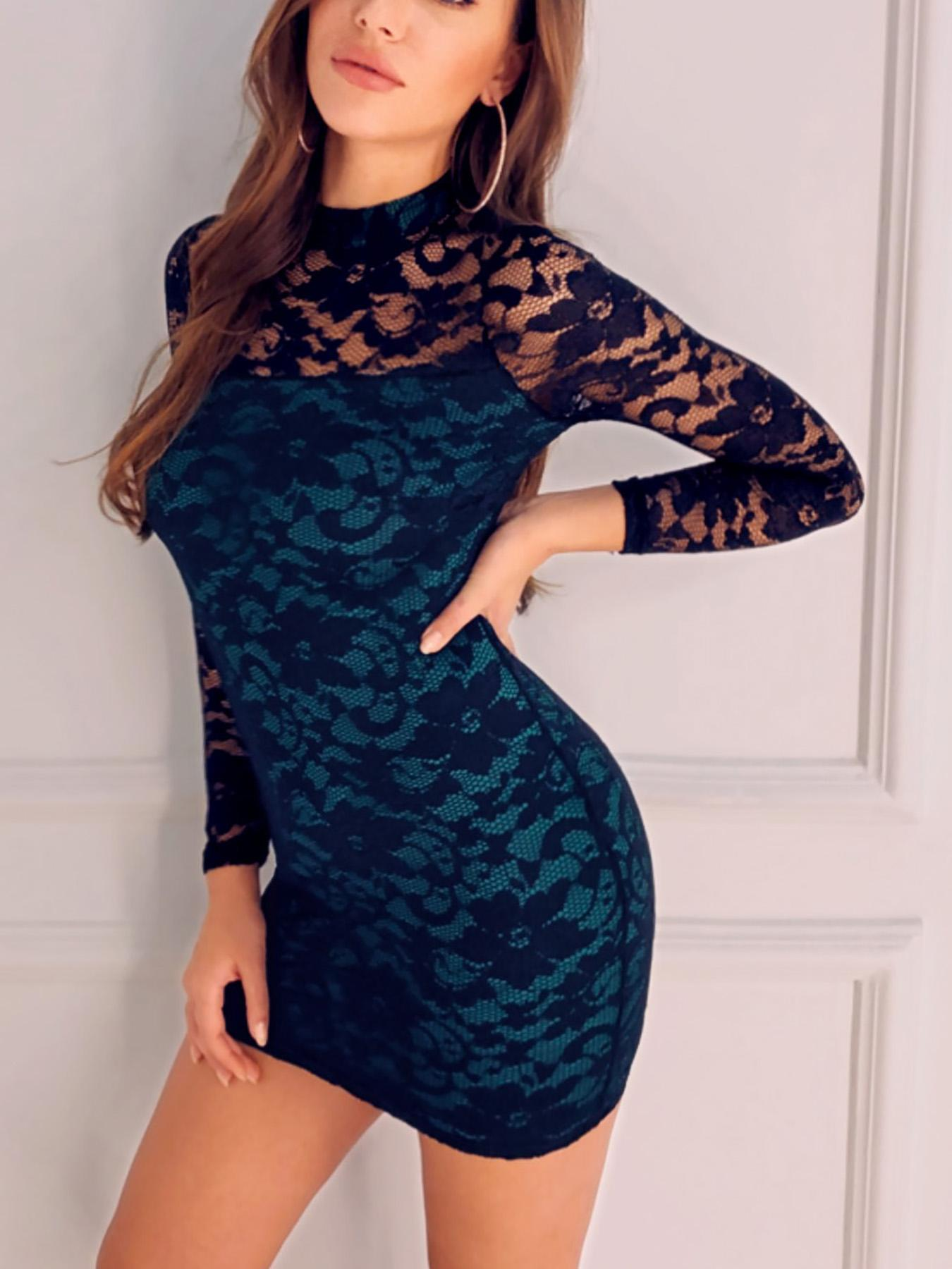 Sheer Mesh Insert Bodycon Lace Dress