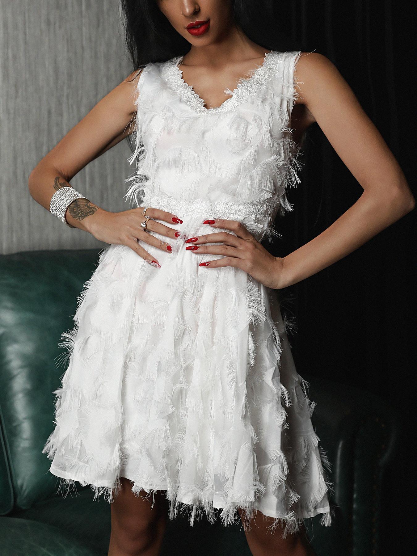 Solid Lace Fringe Trim Pleated Mini Dress