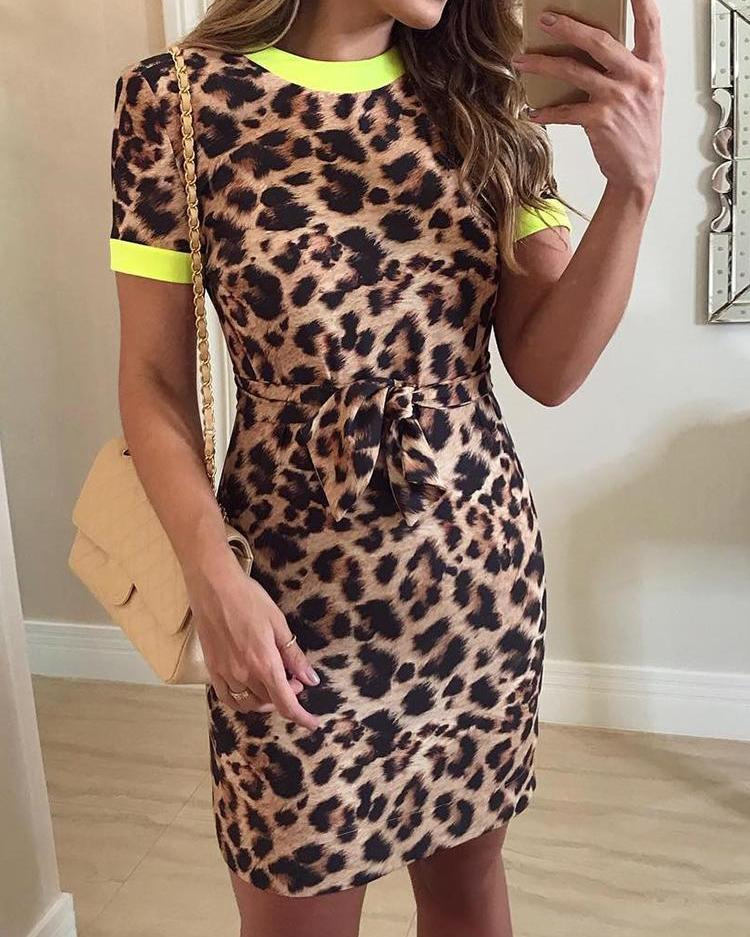 Contrast Binding Leopard Print Belted Dress фото